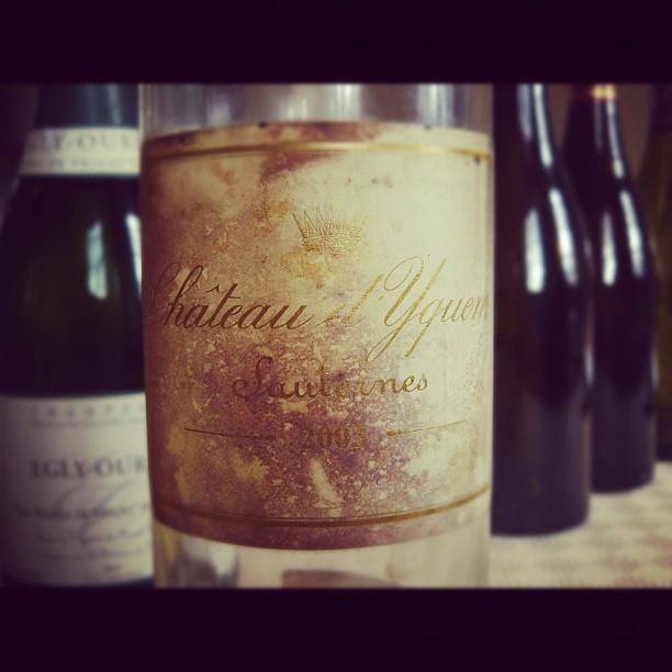 Blog Vin - Chateau Yquem - 2003 - Sauternes - Bordeaux