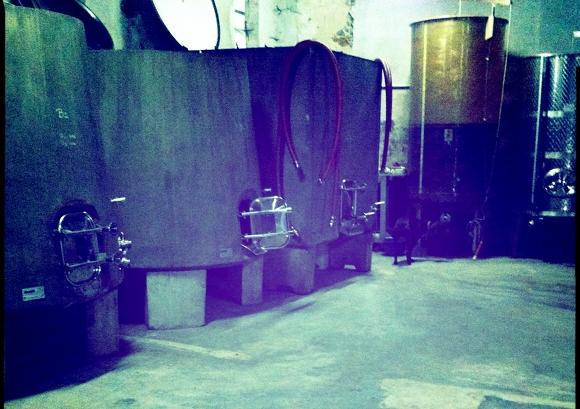 Blog Vin - Clos Maia - Cuves tronconiques beton