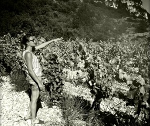 Clos Maïa – Vin de Pays de l'Héraut – Terrasses du Larzac – Languedoc