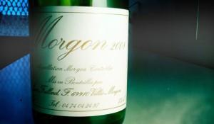 Jean Foillard – Morgon – 2008 – Beaujolais