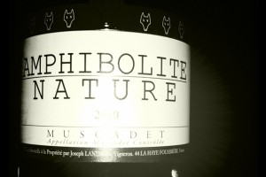 Jo Landron – Amphibolite – 2010 – Muscadet