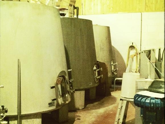 Blog Vin - Mas Haut Buis - Cuves tronconiques béton