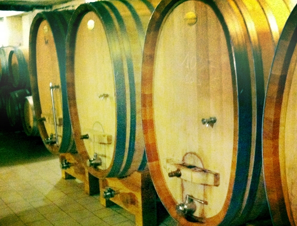 Blog vin - Domaine Camin Larredya - Jurançon - stockinger 1