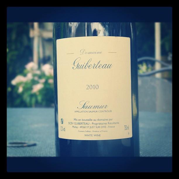 Blog vin - Domaine Guiberteau - Saumur - 2010 - Loire