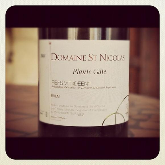 Blog vin - Domaine Saint Nicolas - Plante Gate - 2005 - Fiefs Vendéens - Loire - Rouge