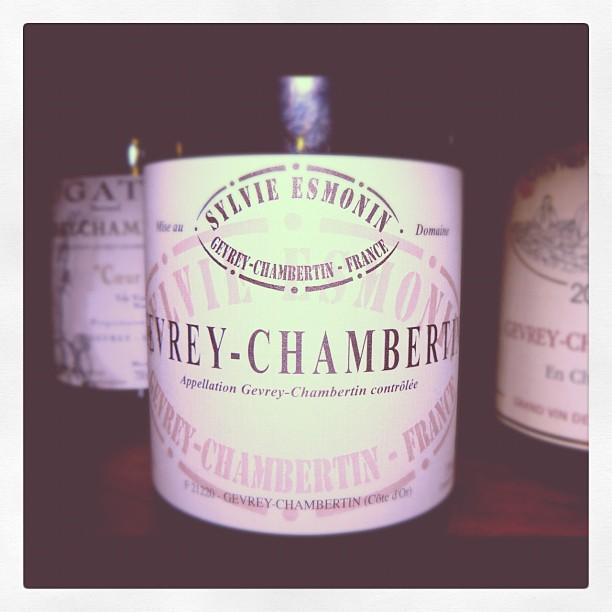 Blog vin - Domaine Sylvie Esmonin - Gevrey Chambertin - 2009 - Bourgogne