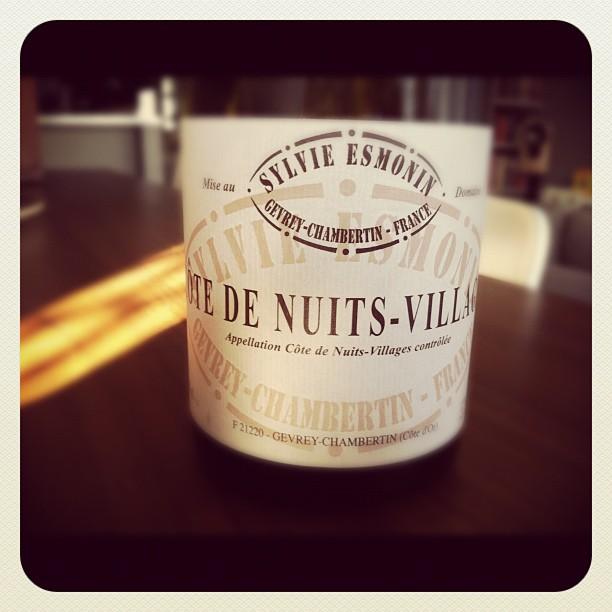Blog vin - Sylvie Esmonin - Cote de Nuit Village - 2009 - Rouge - Bourgogne