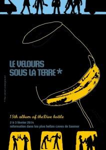 Blog vin – La Dive Bouteille – 2014 – Saumur