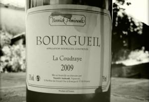Yannick Amirault – La Coudraye – 2009 – Bourgueil